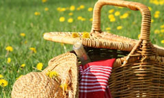 picnic basket, flowers in field, straw hat, online cookbook, digital cookbook