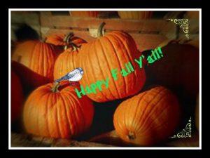 happy fall with pumpkins, pumpkin recipes