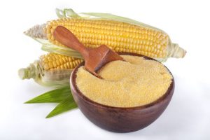 Cornmeal in bowl with scoop and corn on the cob