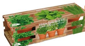 Indoor Herb Garden Grow Kit Giveaway